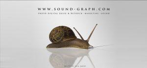 Snail Photo by Luis Jardi